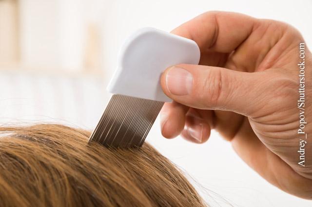 Haare kopfhaut bewegen tut weh beim Kopfhaut tut